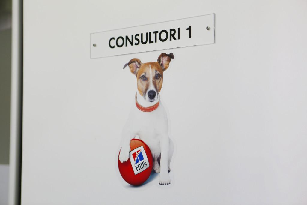 Porta consultori 1