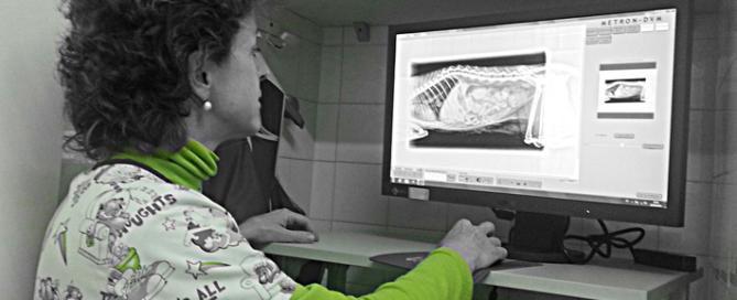 Radiologia 2